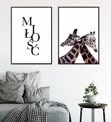 Komplet plakatow MIŁOŚĆ | Zyrafy
