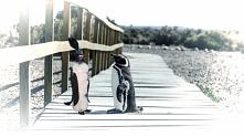 Eko pingwin z plastikowej b...