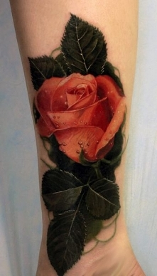 3d realistic colored rose t...