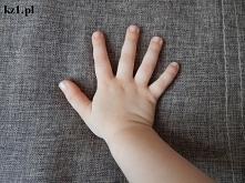 Nazwy palców u rąk.