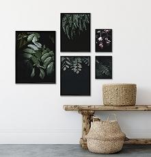 Mała galeria - Botaniczna