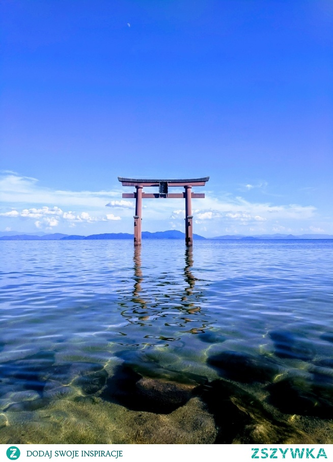 Torii in Lake, jezioro Biwa - Japonia