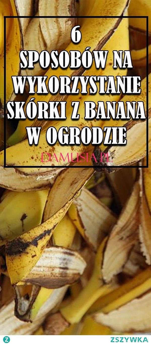 6 Sposobów na Wykorzystanie Skórki z Banana w Ogrodzie