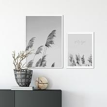 Zestaw plakatów - Fly high