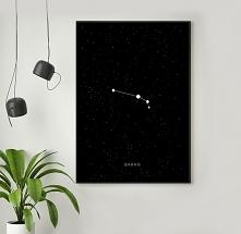 BARAN - znak zodiaku - plak...