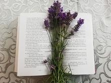 Czytanie to wspaniały relaks i zabawa. Możesz odwiedzić tyle miejsc i światów, tylko przy użyciu wyobraźni! A teraz czas na powrót Harryego Pottera . . Instagram => @nieident...