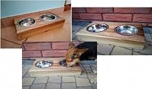 Bufet/bar z drewna dla psa ...