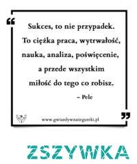 Sukces, to nie przypadek. To ciężka praca, wytrwałość, nauka, analiza, poświęcenie, a przede wszystkim miłość do tego co robisz. – Pele