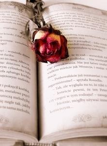 """""""Pokój bez książek  je..."""