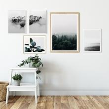Zestaw plakatów - Natura