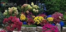 Jesień w ogrodzie -dekoracj...