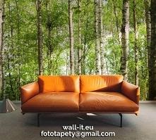 Fototapeta brzozowy las. Autorski wzór ©, wysoka jakość. Dedykowana do salonu, sypialni, czytelni, łazienki, poczekalni. Wzór nr DEW126