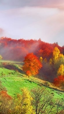 Jesień gdzie jesteś....? Da...