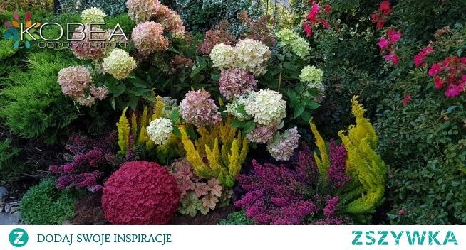 Jesienne aranżacje-ciepłe barwy babiego lata Dekoracje i ozdoby do ogrodu-Kobea Ogrody i Bruki