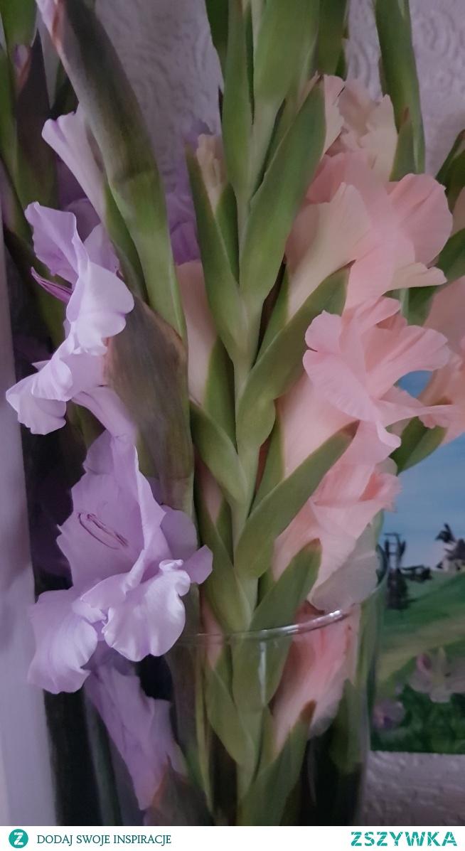 pastelowe kolory :)