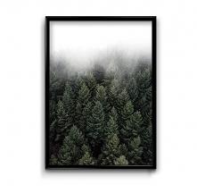 Deep forest #1 - plakat