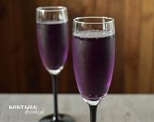 Champagne in Purple - przepis na drink z szampanem Prosecco