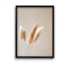 Suche trawy - plakat