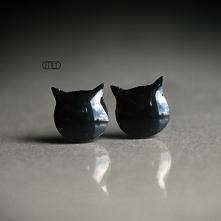 Koty/stal chirurgiczna/