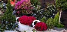 Jesienne dekoracje ozdoby do ogrodu