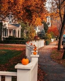 Jesień, dynie