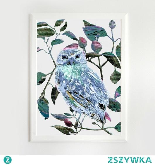 Owl | A3