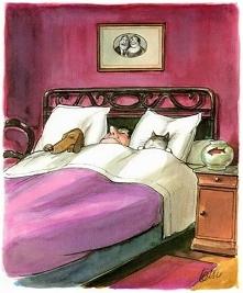 Najlepszy przyjaciel dla każdego to łóżko.