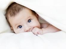 Rozwój wzroku niemowlaka