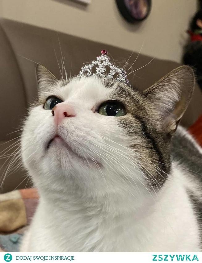 I'm the princess :)
