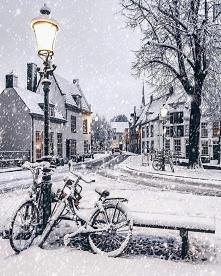 ✨Amersfoort, Holandia