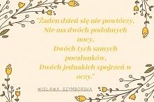 Dziś na blogu cytaty Wisław...