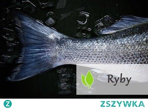 Ryby - rodzaje i wpływ na zdrowie