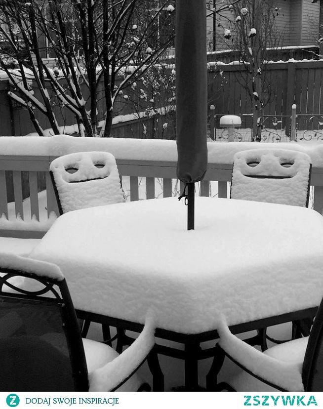 Śnieg ☆ Świat fotografii *