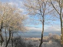 zima nad Zalewem Wislanym.....