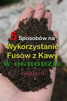 5 Sposobów na Wykorzystanie Fusów z Kawy w Ogrodzie