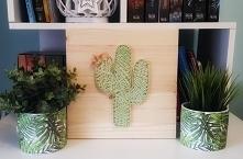 #stringart  #kaktus #kwiat ...