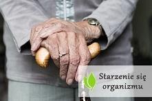 Starzenie się organizmu - n...