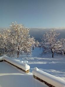 Troszkę śniegu tej zimy jak...