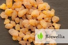 Boswellia - działanie i sku...