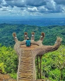 Pinus Pengger Yogyakarta In...