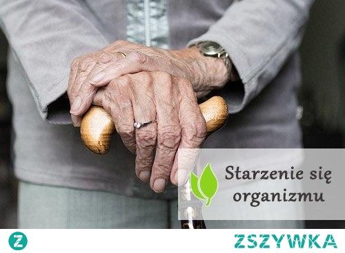 Starzenie się organizmu - na czym polega?