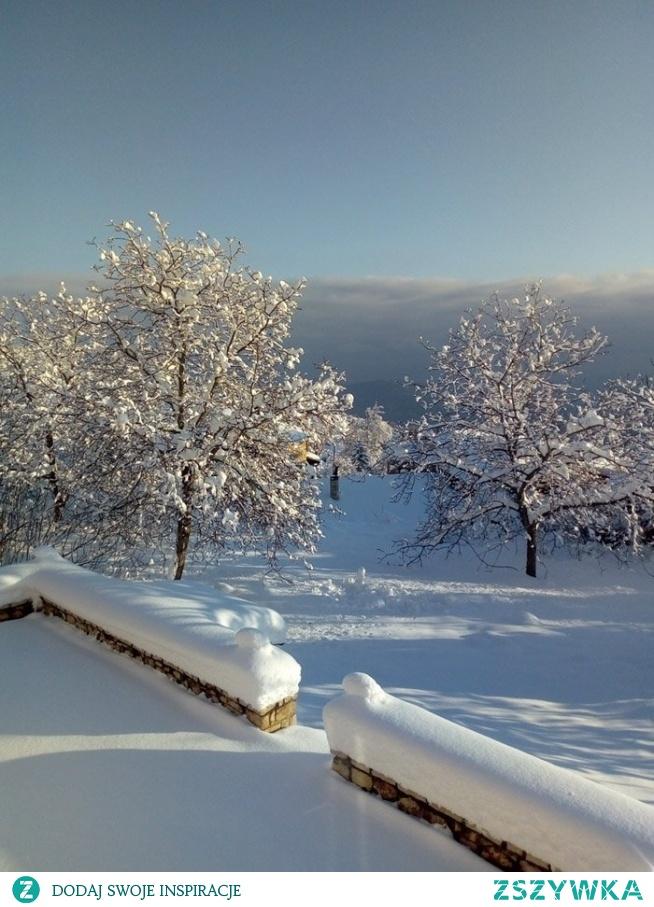 Troszkę śniegu tej zimy jak dobrze by było , zimno ale miło *