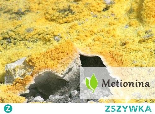 Metionina - czym jest?