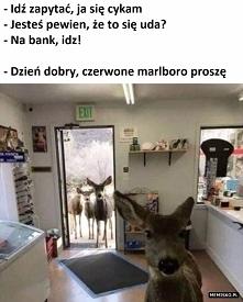 Marlboro poproszę