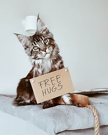 Free Hugs! Więcej na IG @ir...