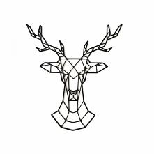 DEER - Lubimy jelenie, więc...