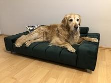 duże legowisko dla dużego psa do 30kg Wilson L od firmy 3C Tappol