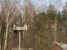 Wiosenny spacer na działkach i taki cudowny domek dla ptaków ❤️