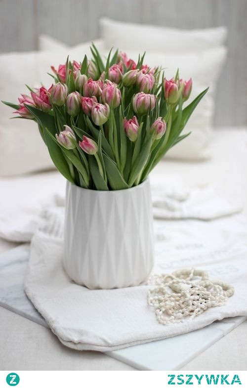 Najpiękniejsze kwiaty!