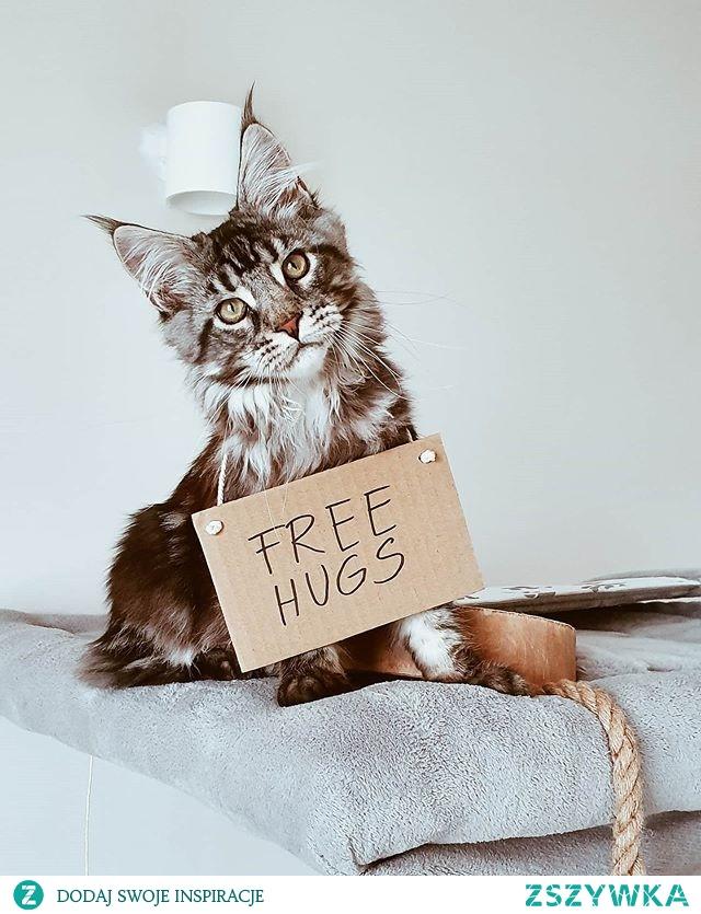 Free Hugs! Więcej na IG @iravatmco